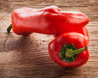 One red Cuban (cubanelle) pepper Royalty Free Stock Images