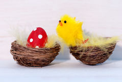 One Red Easter Egg And Yellow Chick In Nest Royalty Free Stock Photo