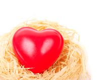 Heart in nest Royalty Free Stock Photo