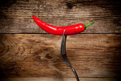 One red hot chili pepper on a fork Stock Photography