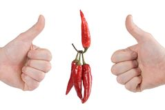 One Red Hot Pepper Lifts Three Pepper Stock Photography
