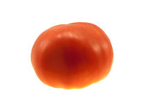 One red juicy tomato Royalty Free Stock Images