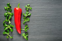 One red Kapia pepper with valeriana salad on a dark shale Stock Image