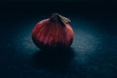 One red onion Stock Photos