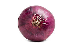 One red onion isolated Royalty Free Stock Photography