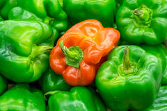 One red pepper in green peppers Stock Photo