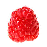 One red ripe raspberry fruit Royalty Free Stock Photo