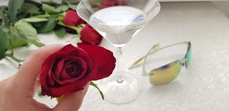 One red rose in female fingers against wide vine glass stock photography