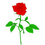 One red Rose in hand drawn style Royalty Free Stock Photos