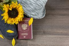 One red russian passport with grey hat and one sunflower Stock Images