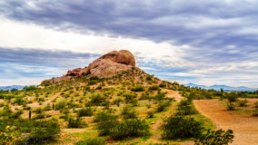 One of the red sandstone buttes of Papago Park near Phoenix Arizona. One of the red sandstone buttes of Papago Park, with its many caves and crevasses caused by Royalty Free Stock Photos