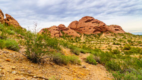 One of the red sandstone buttes of Papago Park near Phoenix Arizona. One of the red sandstone buttes of Papago Park, with its many caves and crevasses caused by Stock Image