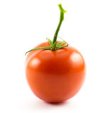 One red small cherry tomato on a white background.  Royalty Free Stock Photo