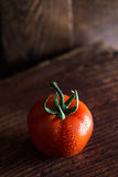 One red tomato Royalty Free Stock Photography