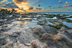 Amazing sunrise in Florida Island. Royalty Free Stock Photos