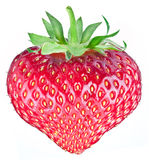 One rich strawberry fruit in the form of heart. Royalty Free Stock Images