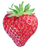 One rich strawberry fruit. Stock Photography