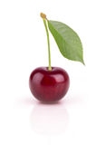 One ripe cherry Stock Photography