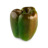 One ripe fresh green pepper isolated on white background Stock Photography