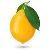One ripe lemon. Isolated on white Royalty Free Stock Photos