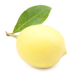 One ripe lemon in closeup Stock Photo