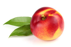 One ripe nectarine with leaves Stock Photography