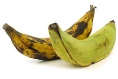 One ripe and one unripe baking banana (plantain) Stock Photos