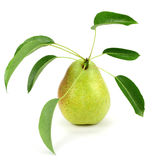 One ripe pear with a leaf. Stock Photos
