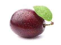 One ripe plum Royalty Free Stock Photography