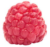 One ripe raspberry Stock Photos