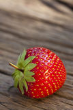 One ripe red strawberry Stock Image