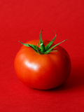 One ripe tomato royalty free stock photography