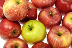 One ripe yellow apple with red apples Stock Image