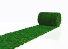 One roll of grass carpet Stock Photos