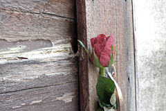 One rose flower with shadow is inserted in door brass handle wit. H old wood door Royalty Free Stock Photos