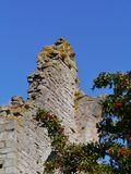 One of the ruins of Visby on Gotland Royalty Free Stock Image