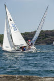 One sailing boat in a competition in sweden Royalty Free Stock Photo