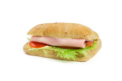 One sandwich Royalty Free Stock Photography