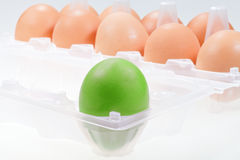 One separate green chicken egg Royalty Free Stock Images