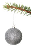 One separated christmas ball handing on a fir. Royalty Free Stock Photo