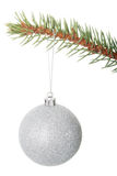 One separated christmas ball handing on a fir. Stock Photo