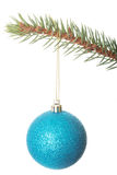 One separated christmas ball handing on a fir. Royalty Free Stock Photography