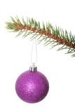 One separated christmas ball handing on a twig. Royalty Free Stock Image