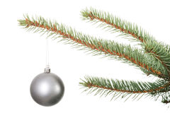 One separated christmas ball handing on a twig. Stock Photo