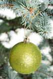 One separated christmas ball handing on a twig. Stock Photos