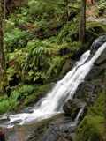 Waterfall at Souixan Falls, Washington State. This is one of a series of rapids and waterfalls at Souixan Falls in Washington State Royalty Free Stock Photos