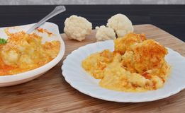 One serving of creamy cheddar cheese cauliflower. Royalty Free Stock Images