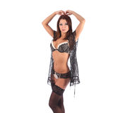 One sexy burlesque dancer woman stripper showgirl Royalty Free Stock Photography