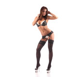 One sexy burlesque dancer woman stripper showgirl in studio isolated Stock Image