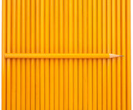 One sharp pencil Royalty Free Stock Photos